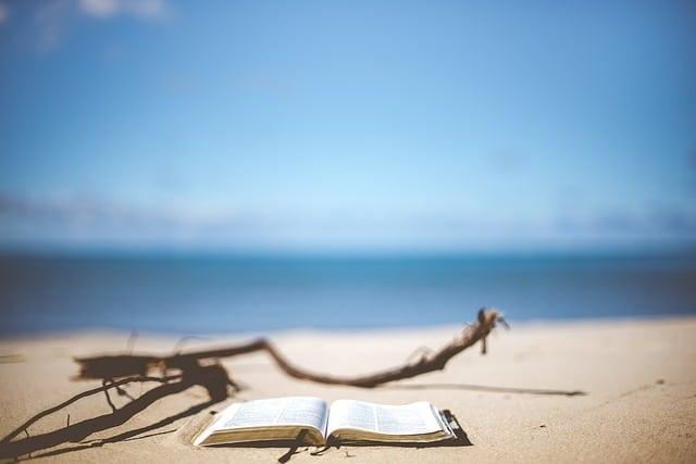 Quels livres liés au numérique lire pendant les vacances ?