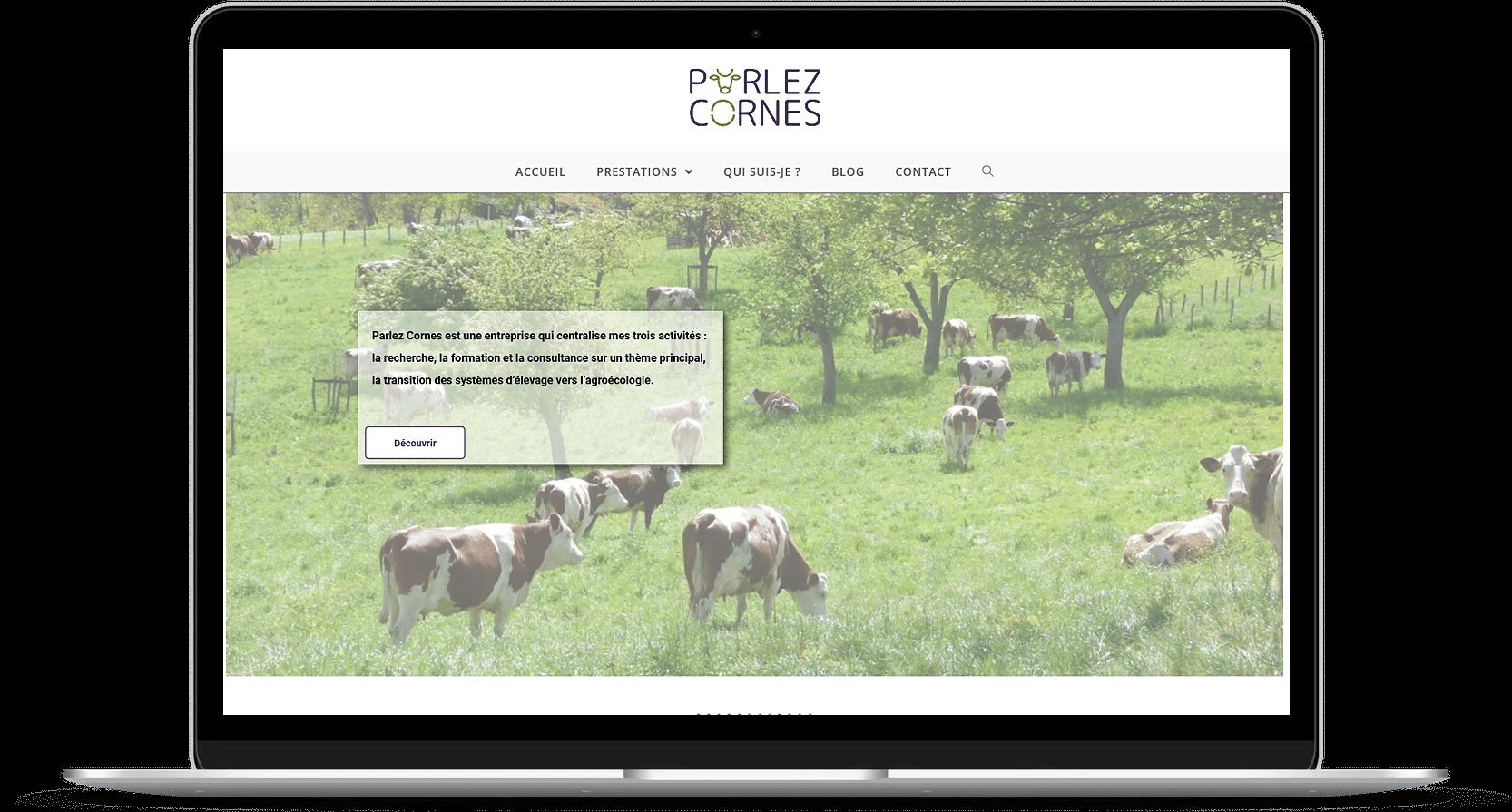 Read more about the article Création de site web – Parlez Cornes